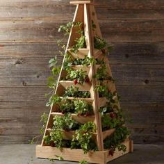 Tips for Growing Food in Small Spaces | Grow your Own Vegetables or Herbs at Home with these Awesome DIY Gardening Ideas for a Sustainable Living by Survival Life at survivallife.com/...