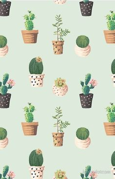 Succulents wallpaper cactus pattern case by cacti and patterns succulent hd iphone . succulents wallpaper large floral a succulent phone . Iphone Wallpaper Illustration, Floral Wallpaper Phone, Illustration Vector, Love Wallpaper, Pattern Illustration, Illustrations, Green Wallpaper, Pattern Wallpaper Iphone, Cactus Illustration