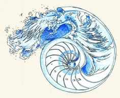 nautilus shell tattoo - Google Search