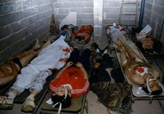 The bodies of victims of the Sarajevo siege. Serbian army stationed in the mountains around Sarajevo terrorized and killed thousands of civilians - elderly men, women, children - and defenders of the Olympic city of Sarajevo. (Patrick Robert, June 01, 1993.)