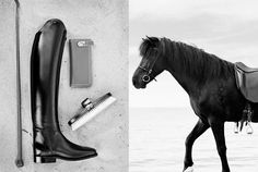 Ditte Isager - The Horse Rider's Journal