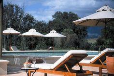 Spier, Stellenbosch, South Africa Outdoor Furniture, Outdoor Decor, Sun Lounger, South Africa, Memories, Spaces, Travel, Home Decor, Memoirs