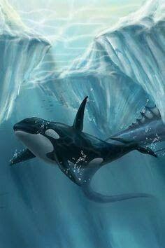 Beauty Beautiful Ocean, Animals Beautiful, Le Morse, Orca Art, Parc A Theme, Rare Animals, Strange Animals, Save The Whales, Whale Art