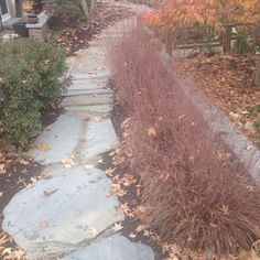 Natural Stone Brick Patios With Walkways Concrete