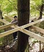 how to build a tree house - Google Search