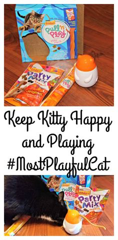 Keep Kitty Happy and Playing with Friskies Pull n Play ad #MostPlayfulcat