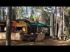 A new bar and place to relax, dine, meet friends and play in the shade of the trees. Free English Lessons, Meet Friends, Learn English, Relax, House Styles, Children, Places, Youtube, Fun
