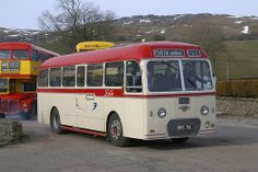 Fife Scottish Alexander bodied Tiger Cub.