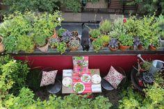 '10 Secrets for Growing an Urban Balcony Garden by Michelle Slatalla' - power to all fellow balcony gardeners!