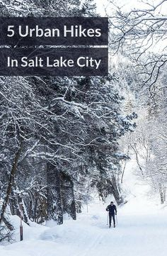The urban trails in Salt Lake City Utah offer the perfect balance of wilderness and accessibility.