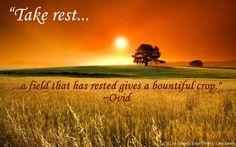 Take Rest...