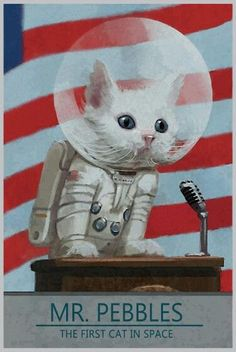 Fallout 4 Poster Mr Pebbles First Cat in Space Poster 11 by 17