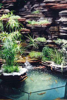 MUR VÉGÉTAL avec un bon équilibre entre l'eau, la roche et les plantes, avec des contrastes de couleurs et de lumières.
