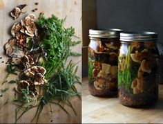 Cold Infused Vinegars from wild & aromatic edible plants
