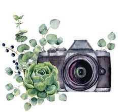 Vintage Retro Watercolor Camera Perfect For Photography Logo Stock. Watercolor Camera With Flowers Stock Photo Picture And Royalty. Isolated Watercolor Camera On White Background Simple Photo. Watercolor Camera Print Nikon T Camera Drawing, Camera Art, Camera Wallpaper, Camera Tattoos, Pics Art, Flower Frame, Cute Wallpapers, Watercolor Art, Grandparents Day