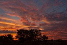 6 things you'll love about the Kalahari
