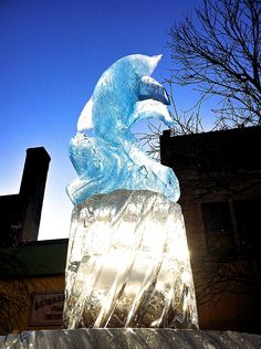 Ice sculpture @ Ithaca Commons.