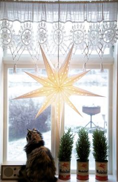 Livs Lyst:Norwegian Interior Style Blog A Christmas star in every home in Norway