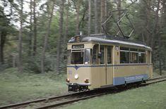 ウォルタースドルフ路面電車(上) 森の中を走る ドイツ ベルリン 服部一人:現代鉄道写真研究所
