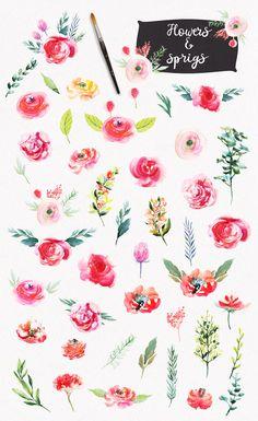 Watercolor Bright Flowers by Spasibenko Art on @creativemarket