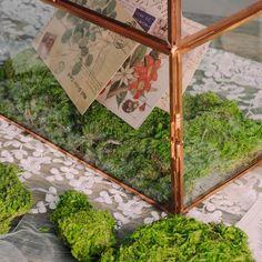 Preserved Short moss pole moss Natural Green 20x50cm for DIY image 5 Moss Centerpieces, Card Box Wedding, Wedding Ideas, Moss Terrarium, Moss Wall, Cute Frames, Moss Garden, Beautiful Fairies, Garden Gifts