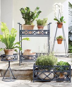 Classic styling and a graphic X and O pattern make up this timeless collection of planters and planter accessories. Designed to hold bright blooms and lush foliage indoors or out. Garden Oasis, Home And Garden, Planter Accessories, Pattern Making, Cleaning Wipes, Lush, Planter Pots, Bloom, Backyard