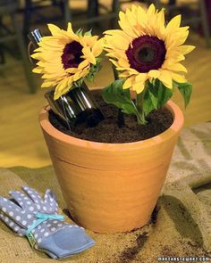 Martha's friend Jane Heller serves her dirt cake creatively: She presents the cake in a sterilized terra-cotta pot, then inserts sunflowers (wrap stems in plastic) into the cake for decoration.