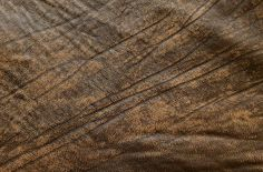 Texturas de piel y de cuero   recursos WEB & SEO