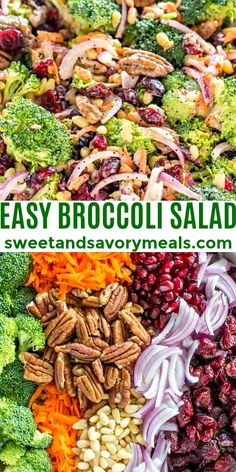 Broccoli Salad with Creamy Lemon Poppy Seed dressing is a cold side dish with loads of flavor, texture, and crunch. #broccolisalad #salad #broccoli #sweetandsavorymeals Chopped Salad Recipes, Green Salad Recipes, Best Salad Recipes, Vegan Recipes, Easy Recipes, Green Salad Dressing, Cold Side Dishes, Easy Broccoli Salad, Chicken Recipes