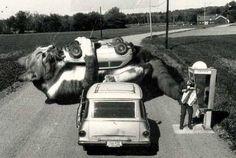 Riesenkatze frisst Auto / Cat eats Car