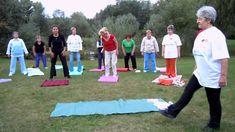 Kínai meridiántorna Leslie Sansone, Tai Chi, Health Tips, Outdoor Blanket, Exercise, Youtube, Sport, Blog, Ejercicio