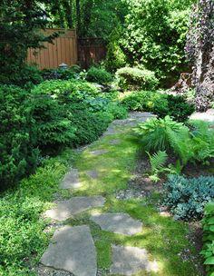 Love this flagstone path from threedogsinagarden.blogspot.ca