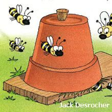Bee Friendly: Create Nesting Homes for Bees - National Wildlife Federation