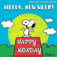 10 Monday Snoopy Quotes For The New Week - Montag Lustig Happy Monday Funny, Happy Monday Quotes, Monday Morning Quotes, Monday Humor Quotes, Good Morning Snoopy, Good Morning Happy Monday, Good Morning Greetings, Happy New Week, Morning Gif