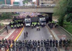 """Diário da Insurgência: Situação na Venezuela: população passa a """"comer cã..."""
