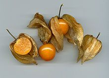 Kapstachelbeere – Wikipedia - that berry we kept having in Germany and wondering what on earth it was :)