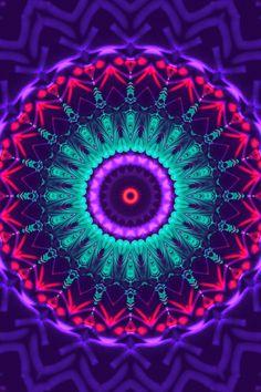 Jellyfishtimes ➤ Psychedelic Jellyfish