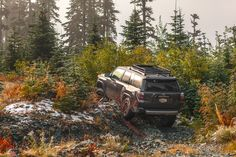 017 Toyota 4Runner TRD Off-Road. #Toyota #4Runner #TRD #TRDoffroad #KDSS #T4R #SUV #Truck #MagneticGrey #4x4 #Offroad #5thGen #5thGeneration #Rola #bilstein #rotiform