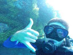 Great Barrier Reef Scuba diving  #greatbarrierreef #gopro #australia #reefselfie by igorperigor http://ift.tt/1UokkV2