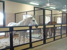Open stalls...cool concept. Looks much easier to keep clean. no rotting wood.