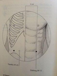 spleen 15 Artists, Acupuncture