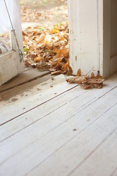 Fall Leaves | Cabin | Camp Wandawega