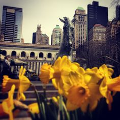 #Spring in #NYC