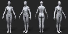 ArtStation - Anatomy Female Tool Reference for Artists !, Pascal Ackermann