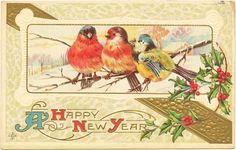 Ak Litho Neujahr c 1910 Vögel Gold beautiful Prägedruck Sammlungsauflösung in Sammeln & Seltenes, Ansichtskarten, Motive | eBay