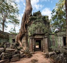 Picture of Angkor Wat Cambodia Ta Prohm Khmer ancient Buddhist temple in jungle forest Famous landmark, place of worship and popular tourist travel destination in Asia stock photo, images and stock photography. Angkor Wat, Angkor Vat, Angkor Temple, Temple Ruins, Buddhist Temple, Ta Prohm, Jungle Temple, Architecture Antique, Modern Architecture