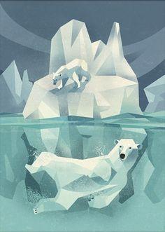 Poster Polar bear 50 x 70 cm