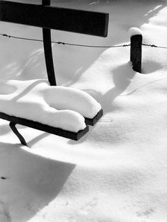 Winter Day, Winter Snow, Winter White, Winter Christmas, Object Heads, Winter's Tale, Winter Colors, Black N White, Winter Is Coming