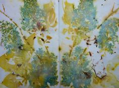 amazing blog on experimenting with printing/dyeing with plant parts - Eco Prints | Threadborne