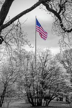 American Freedom, American Spirit, American Pride, I Love America, God Bless America, Winter Pictures, Colorful Pictures, Patriotic Pictures, American Flag Pictures